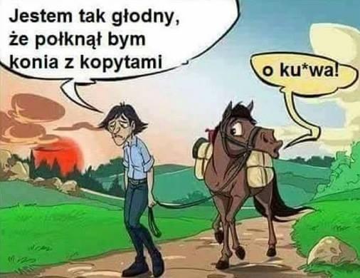 Połknąłbym konia z kopytami