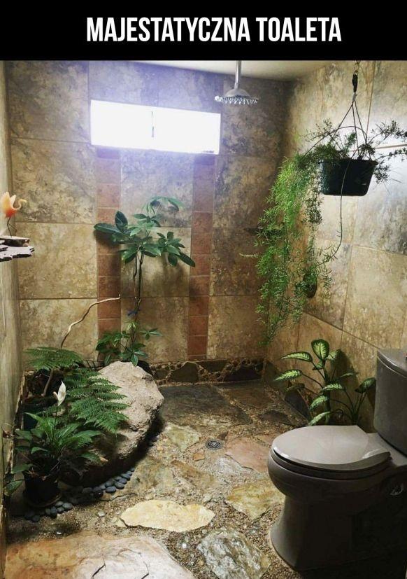 Majestatyczna toaleta