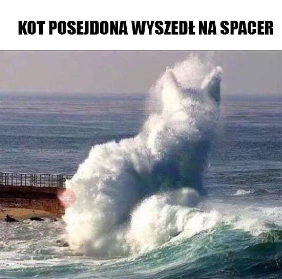 Kot Posejdona