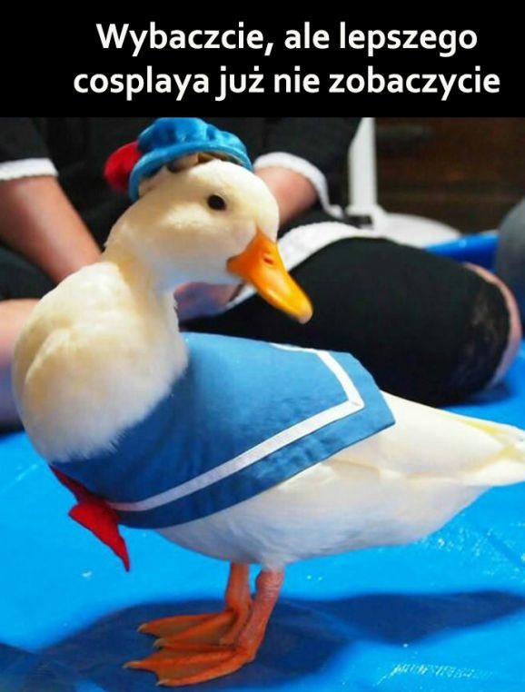 Najlepszy cosplay