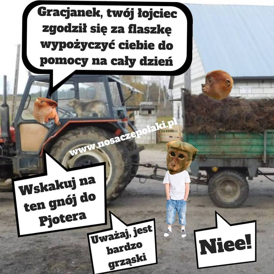 Gracjanek na wsi