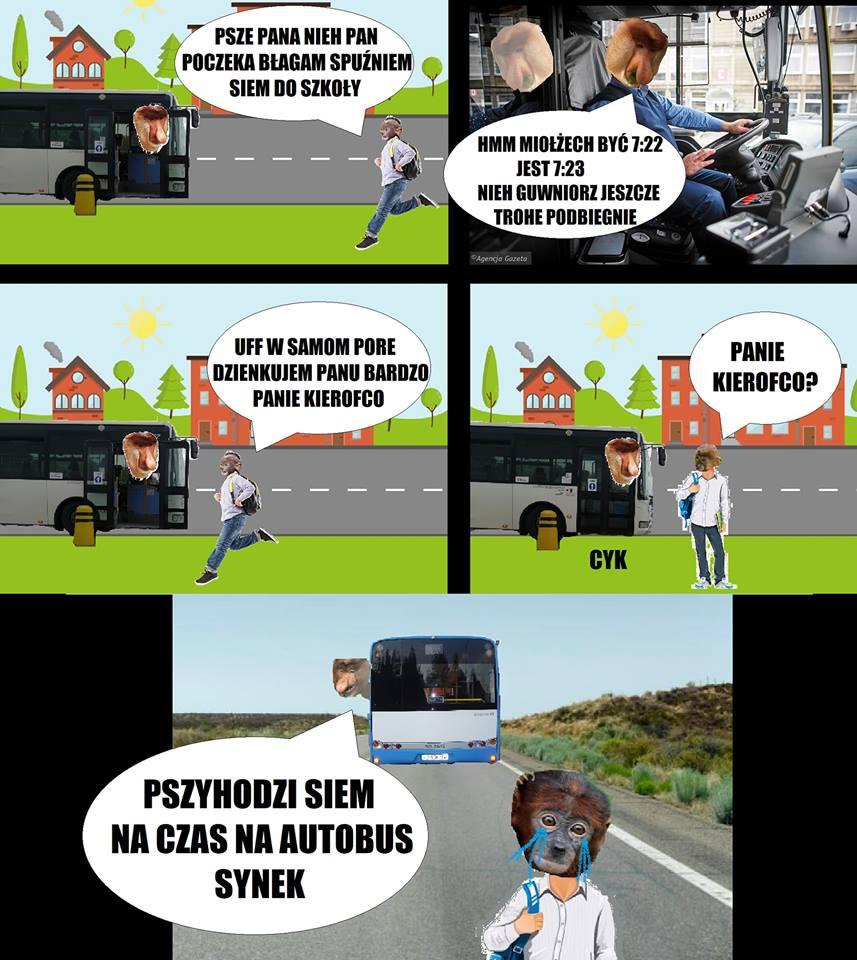 Januszowy kierowca autobusu