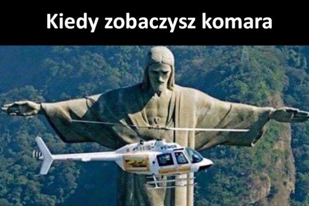 Kiedy zobaczysz komara