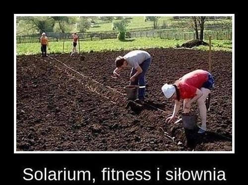 Solarium fitness i siłownia