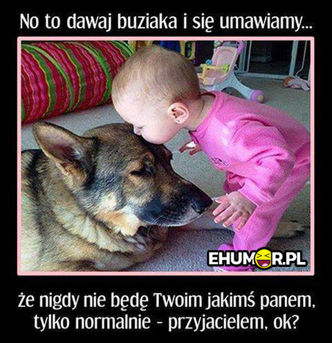 Umowa bobasa z psem