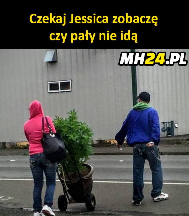 Jessica i Seba po zakupach xD