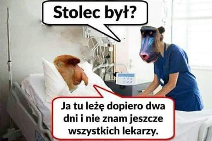 Kiedy Janusz znajdzie się w szpitalu 1