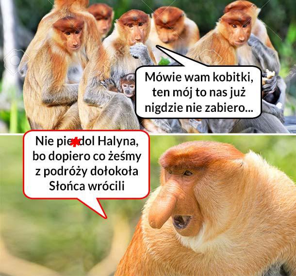 Halyna narzeka koleżankom na Janusza