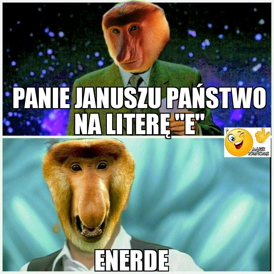 Janusz i państwo na literę E