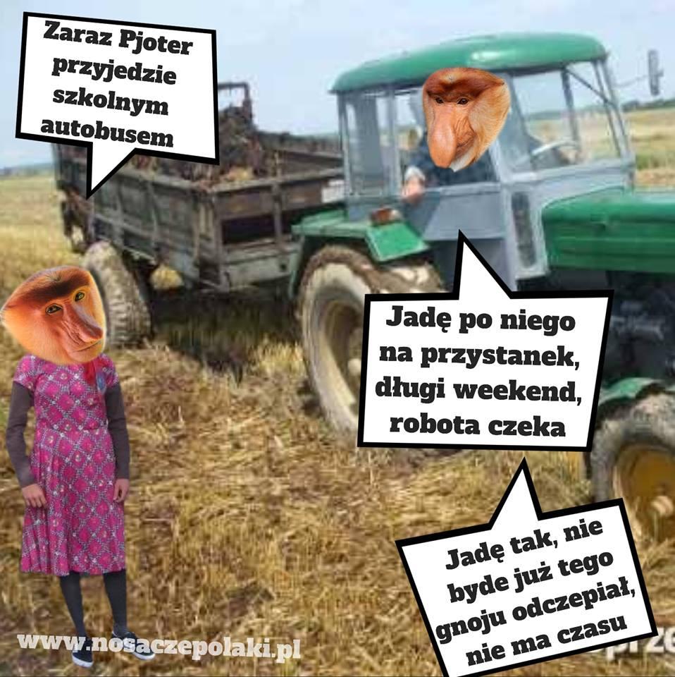 Janusz jedzie po Pjotera