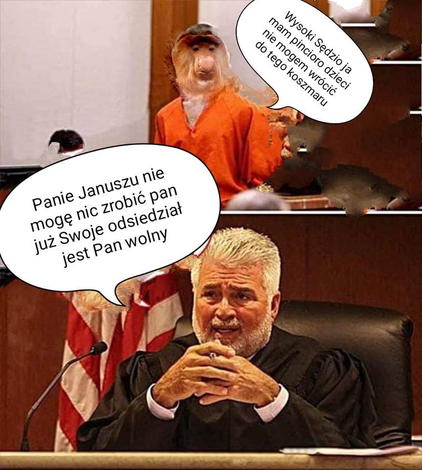 Janusz w sądzie