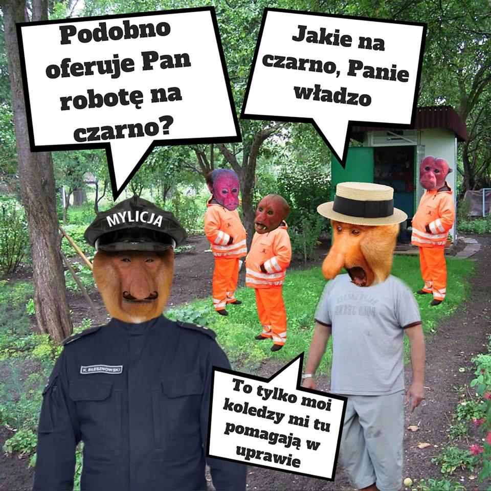 Policja u Janusza