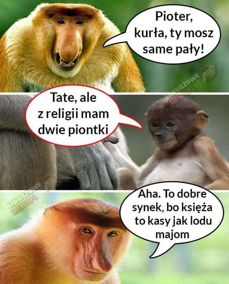 Rozmowa Janusza i Piotera o ocenach