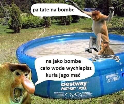Bomba Piotera