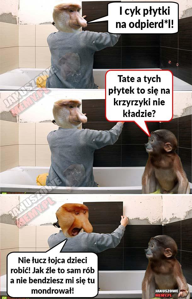 Janusz i płytki xD