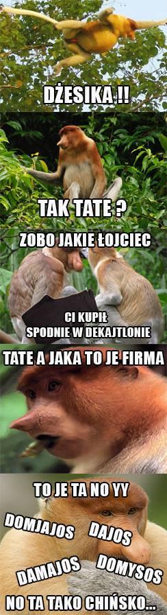 Janusz kupił spodnie dla Dżesiki