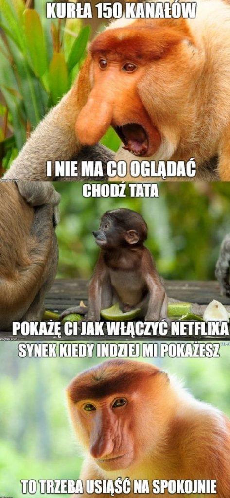Kiedy Janusz narzeka na TV