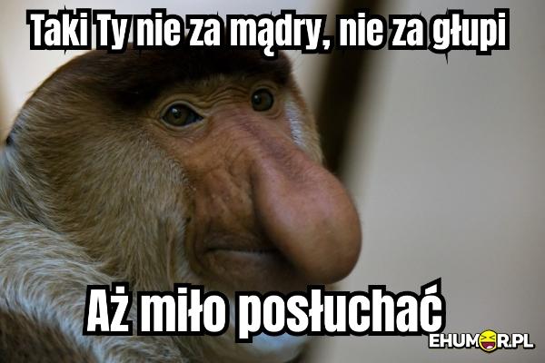 [Obrazek: mememe_814c23eebc7f51b8a59ea9bd7810c5a9-1.jpg]