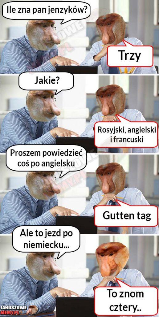 Poliglota Janusz xD