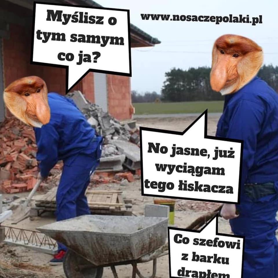 Janusze na budowie