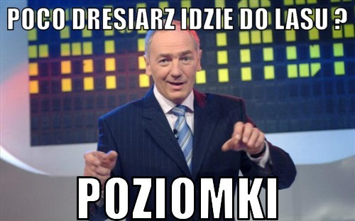 Po co do lasu idzie dresiarz xD