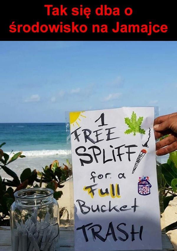 Tak się dba o środowisko na Jamajce