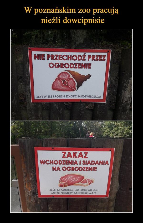 W poznańskim zoo pracują dowcipnisie