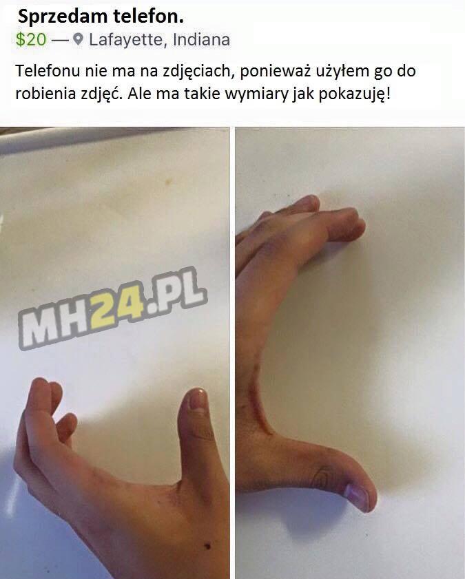 Janusze Allegro
